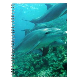水水泳の下のイルカの魚の海洋の海 ノートブック