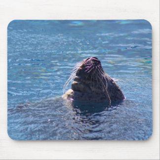 水泳のアシカ マウスパッド