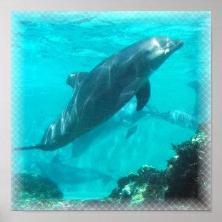 水泳のイルカのプリント ポスター