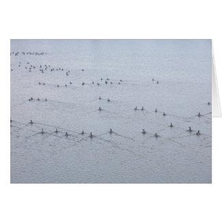 水泳のガチョウカードの航跡 カード