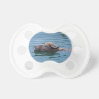水泳の水牛 おしゃぶり