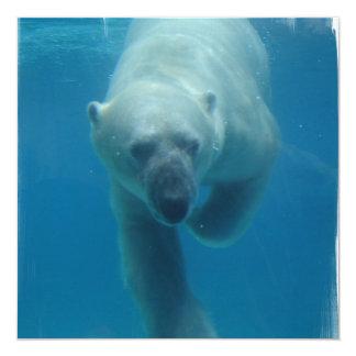 水泳の白くまの招待状 カード