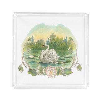水泳の白鳥 アクリルトレー