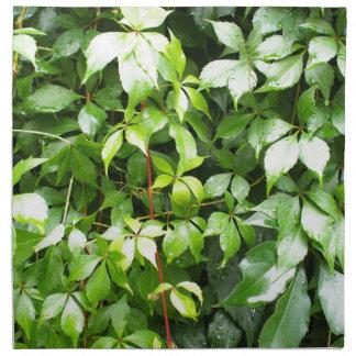 水滴が付いている緑の葉 ナプキンクロス