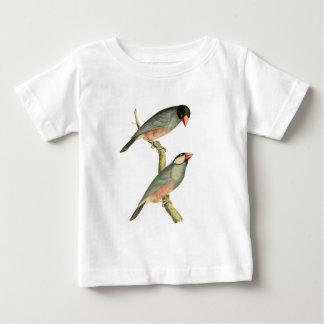 水田の鳥、米の鳥、またはブンチョウの鳥Illust ベビーTシャツ