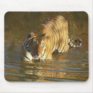 水、Ranthambhorの王室のなベンガルトラ マウスパッド