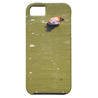 水EUNGELLAオーストラリアのPLATYPUSのダイビング iPhone SE/5/5s ケース