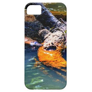 水EUNGELLA国立公園オーストラリアのPLATYPUS iPhone SE/5/5s ケース