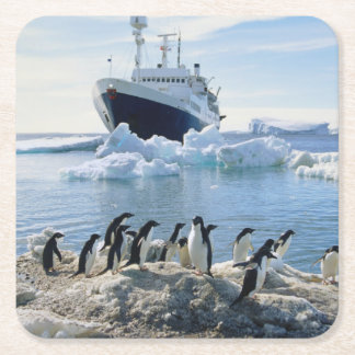 氷ったビーチに立っているペンギンのグループ スクエアペーパーコースター