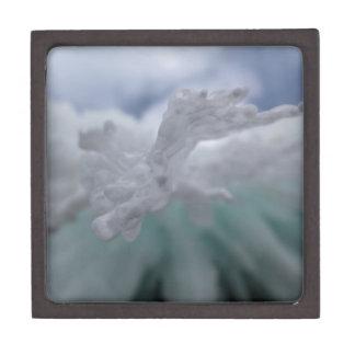 氷った冬 ギフトボックス