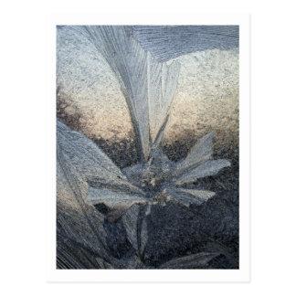氷の花 ポストカード