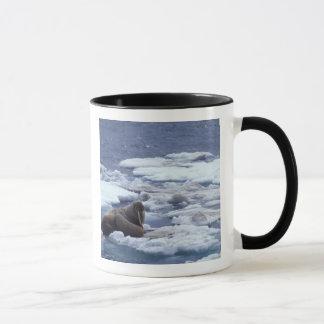 氷のNA、米国、アラスカ、セイウチおよび若者 マグカップ