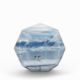 氷山のペンギン 表彰盾