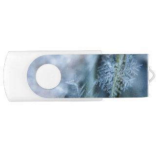 氷晶、冬季、雪、自然 USBフラッシュドライブ