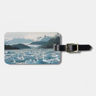 氷氷山 ラゲッジタグ