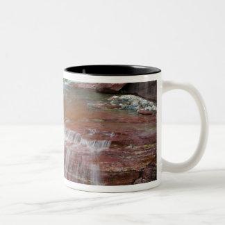 氷河国民の入り江の暴露の赤い石 ツートーンマグカップ