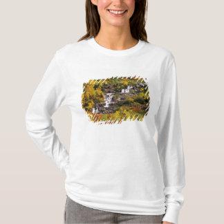 氷河国民のMtの大砲の下の滝 Tシャツ