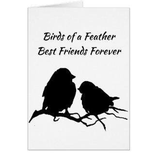 永久に同類の親友 カード