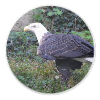 永続的なアメリカの白頭鷲 セラミックノブ