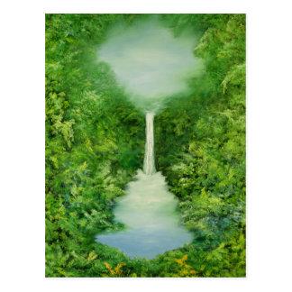 永遠に続く熱帯雨林1997年 ポストカード