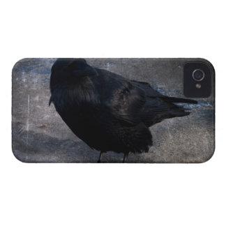 汚いワタリガラス; 文字無し Case-Mate iPhone 4 ケース