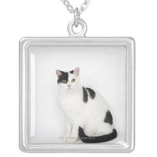 汚点を持つ白い猫 シルバープレートネックレス