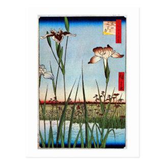 江戸の菖蒲、江戸、Hiroshigeの広重のアイリス ポストカード