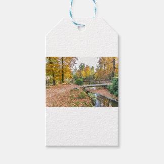 池が付いている森林および秋色の橋 ギフトタグ