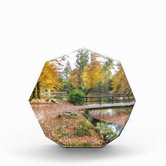 池が付いている森林および秋色の橋 表彰盾