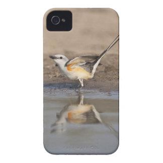 池に反映される切後につかれたFlycatcher Case-Mate iPhone 4 ケース