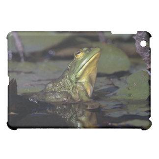 池のカエル iPad MINIケース