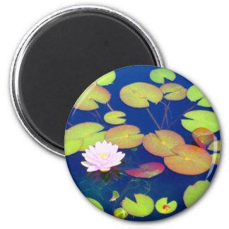 池のスイレンの浮いている葉によって浮かぶピンクのはすの花 マグネット