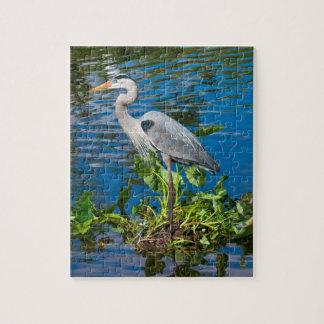 池のパズルの素晴らしい青鷲 ジグソーパズル