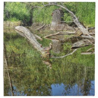 池のマガモ ナプキンクロス