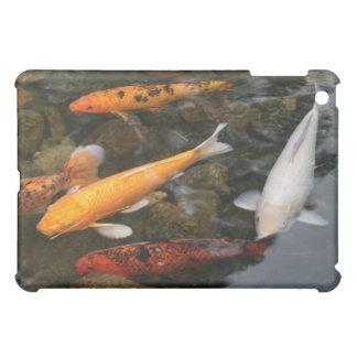 池の写真のコイの魚 iPad MINI カバー