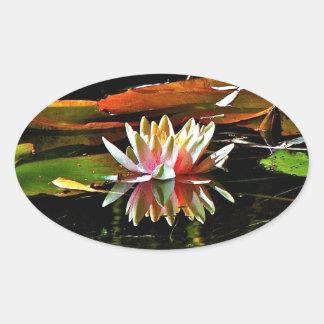 池の春のスイレン 楕円形シール