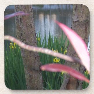 池の植物相 コースター