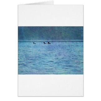 池の水潜り鳥 カード