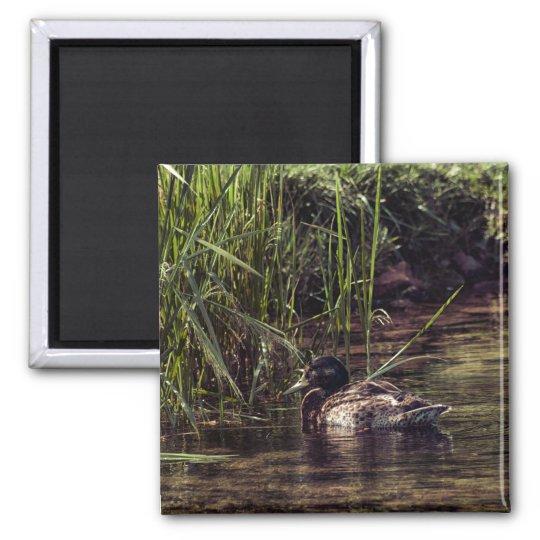 池の端 マグネット