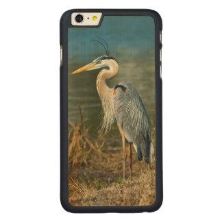 池の素晴らしい青鷲の鳥 CarvedメープルiPhone 6 PLUS スリムケース