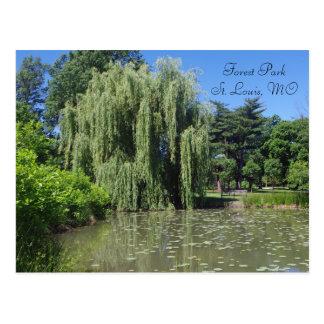 池のForest Parkのシダレヤナギ ポストカード
