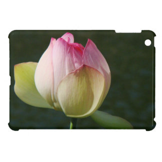 池水庭の《植物》スイレンの花の花柄Lilypads iPad Miniケース