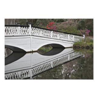 池、マグノリアに反映する橋 フォトプリント