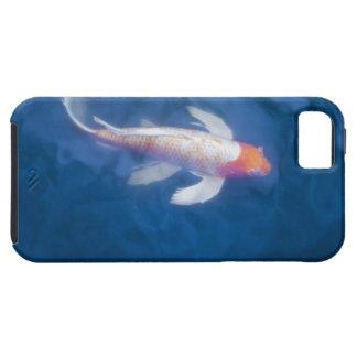 池、高角の眺めの日本のなコイの魚 iPhone SE/5/5s ケース