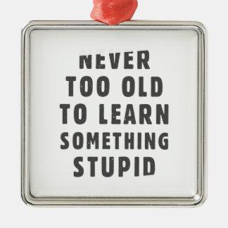 決して余りに古い愚かな何かを学ぶため メタルオーナメント