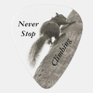 決して白黒リスに上ることを止めないで下さい ギターピック