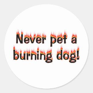 決して非常に熱い犬をかわいがらないで下さい! ラウンドシール