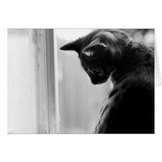 沈痛な子ネコ グリーティングカード