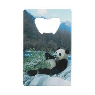 河岸、Wolong、2によるパンダの食べ物のタケ クレジットカード 栓抜き