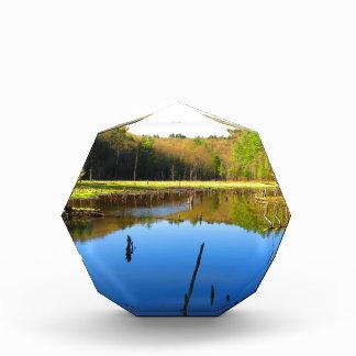 沼地の水路 表彰盾